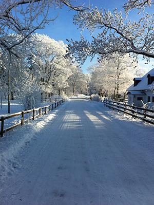Vinterväg till Kilmaninstitutet
